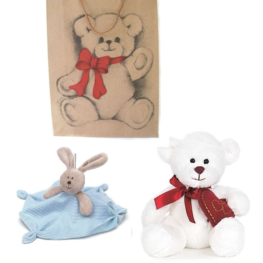 Gift Bag for a Baby Boy Bear and Blanky , Newborn and up - Click Image to Close