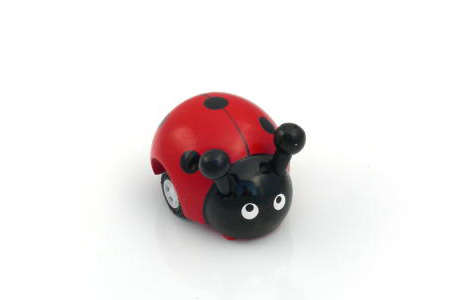 Mechanical Wooden Ladybug