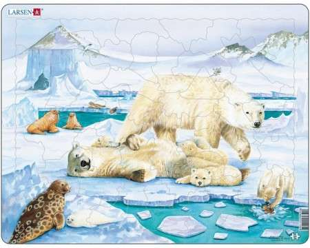 Larsen Polarbear in Natural Surrounding Puzzle 54 pcs 021105 FH5