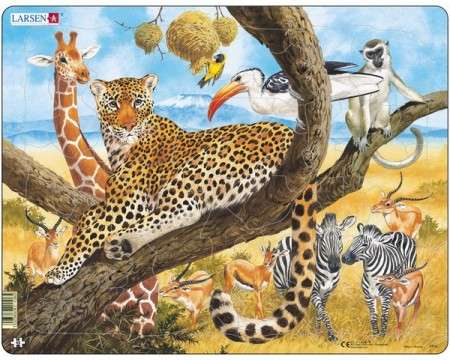 Larsen Leopard in Natural Surrounding Puzzle 48 pcs 021108 FH8